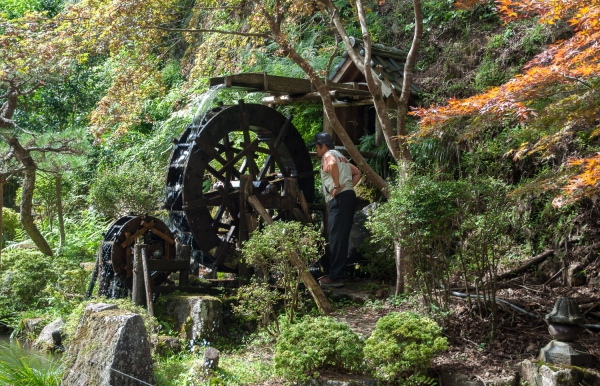 Water Wheel (Maintenance Work)