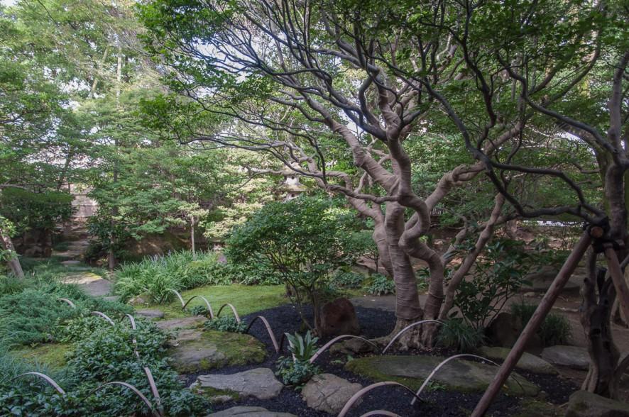 kanazawa_garden-1