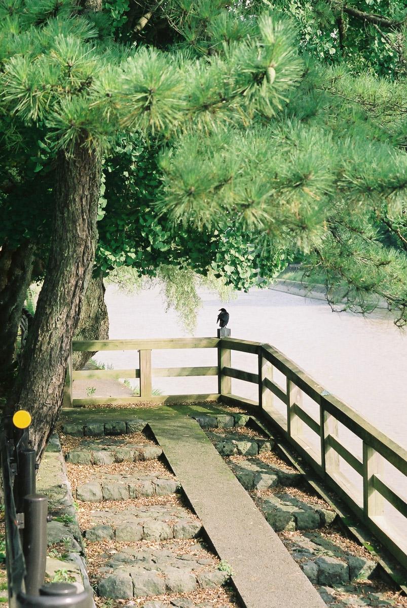 kanazawa_river-1