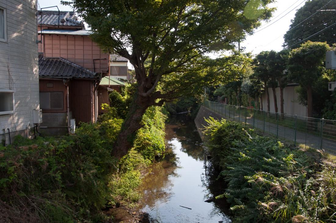 Kamakura_afternoonwalk-11