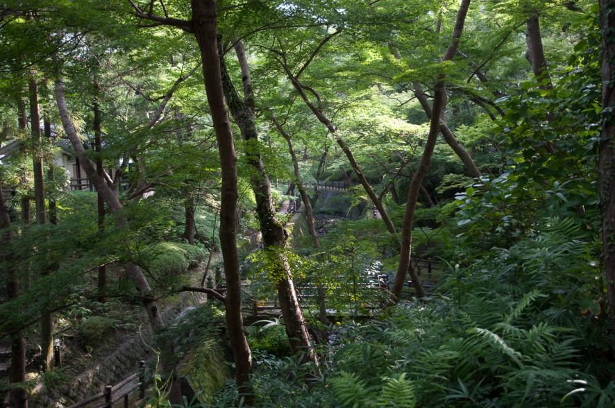 wakayama_temple-2