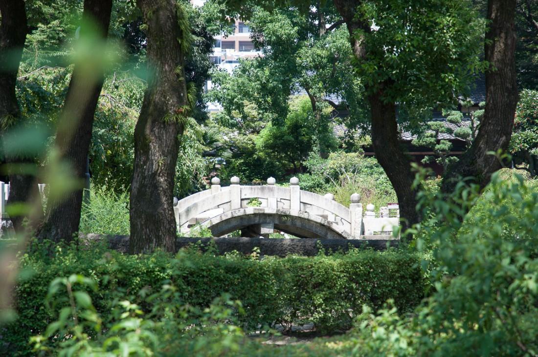 mysterybridge-2